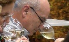 Cata de vinos en Restaurante Ribera