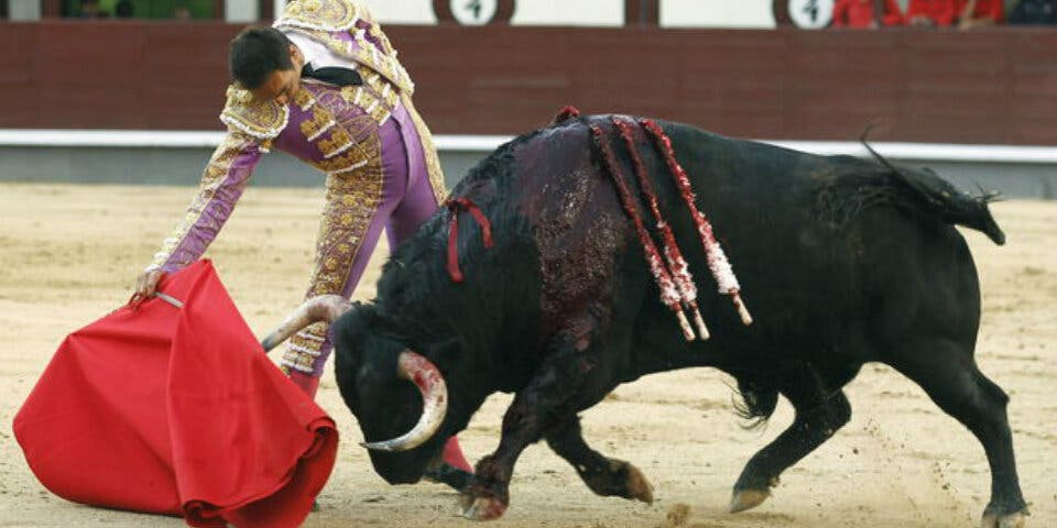Somos Alcalá (Podemos) rechaza la corrida de toros cervantina