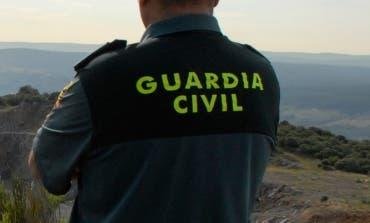 Detenido en Coslada por robos cometidos en fincas de un pueblo de Ávila