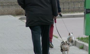 Coslada intensifica los controles sobre los perros peligrosos y los excrementos caninos