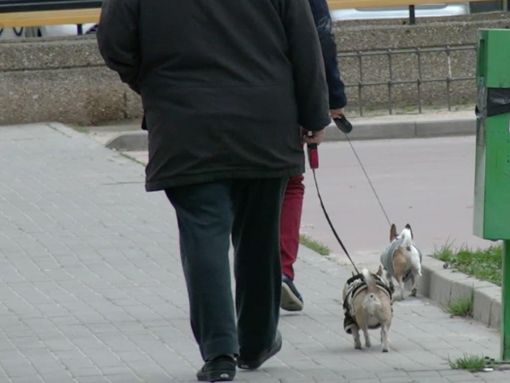 Torrejón de Ardoz incrementa la sanción por no recoger los excrementos caninos