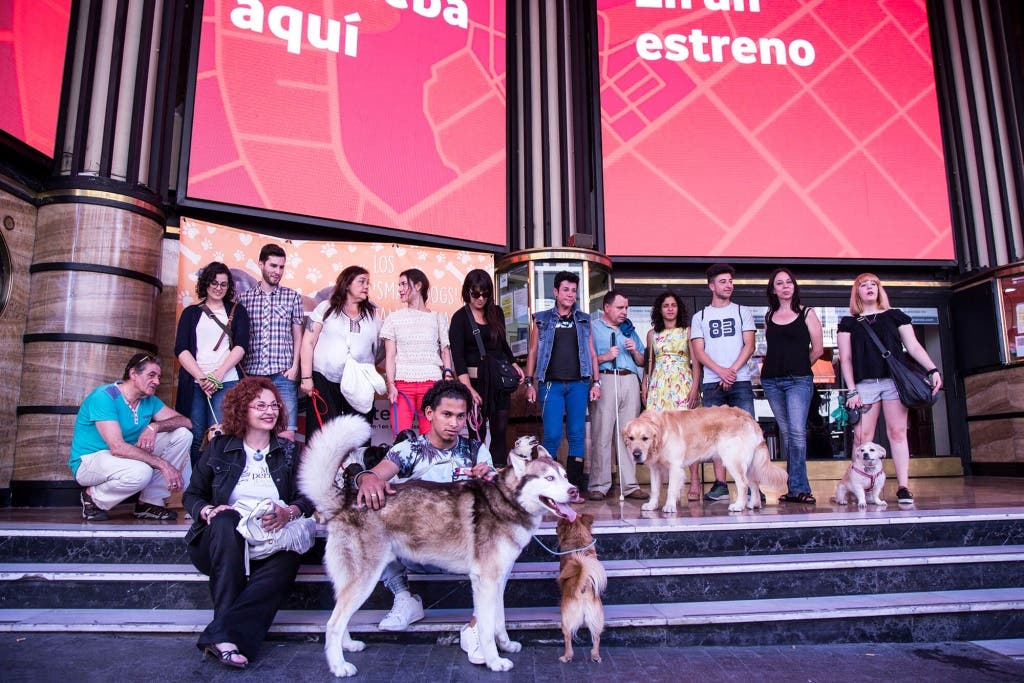 smart-dog-cine-capitol-perros-4