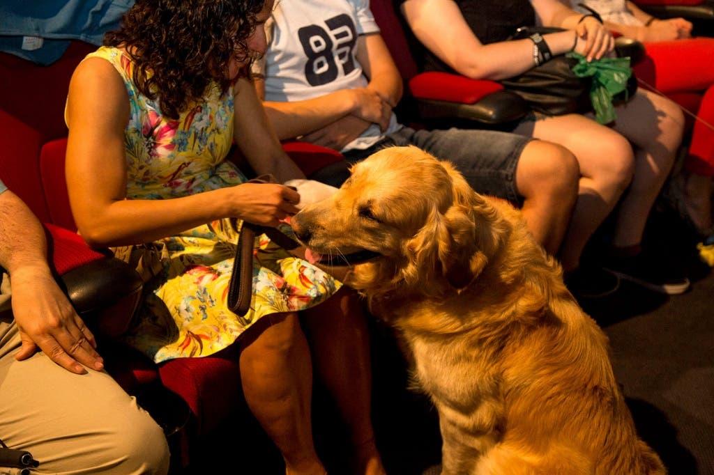 smart-dog-cine-capitol-perros-8