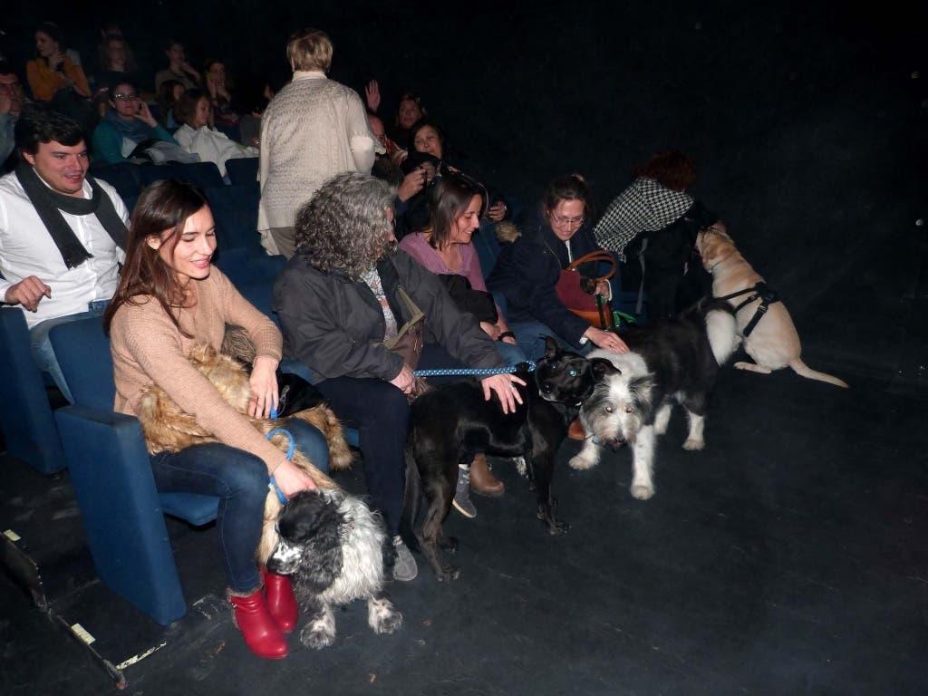 teatro-con-perros-p
