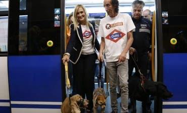 Desde este miércoles los perros podrán viajar en el Metro de Madrid
