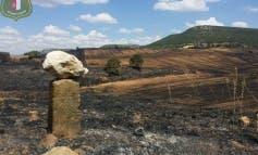 AL MINUTO! Extinguido el incendio de Uceda, Guadalajara