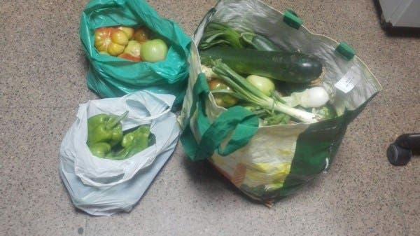 Sorprendidos en Velilla con bolsas llenas de hortalizas que habían robado en un huerto