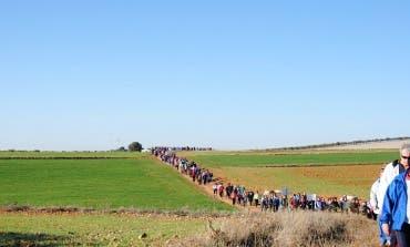 El Camino de Cervantes vuelve el domingo con una gran barbacoa en Ajalvir