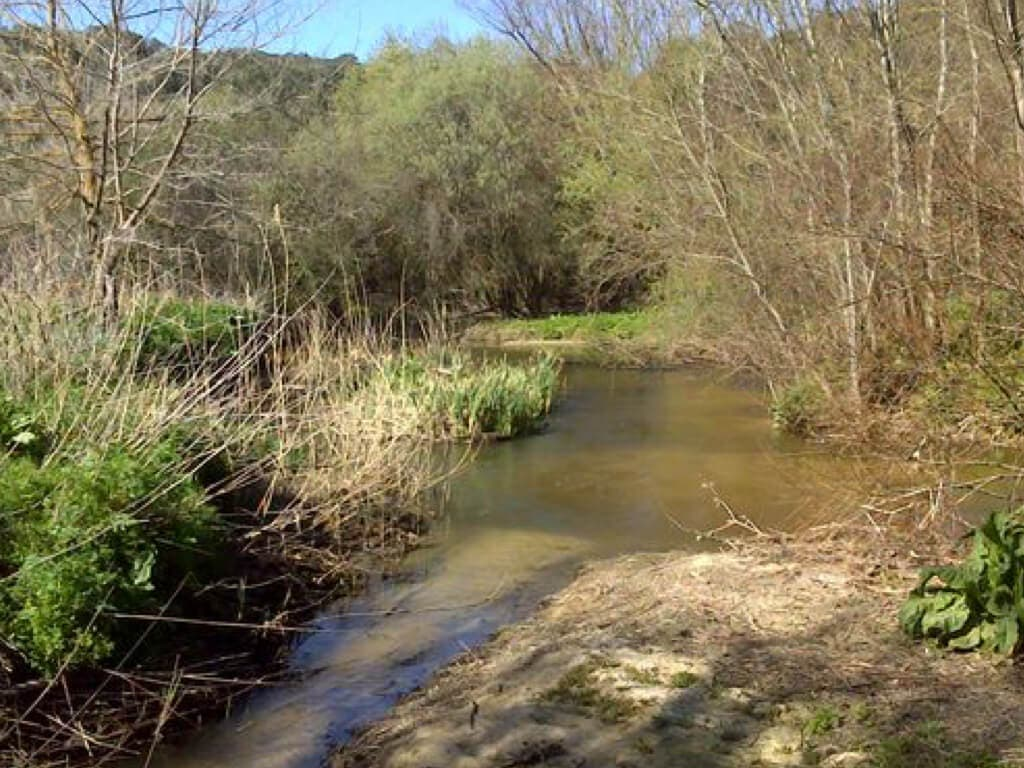 La autopsia confirma la muerte violenta del cuerpo hallado en el río Guadarrama