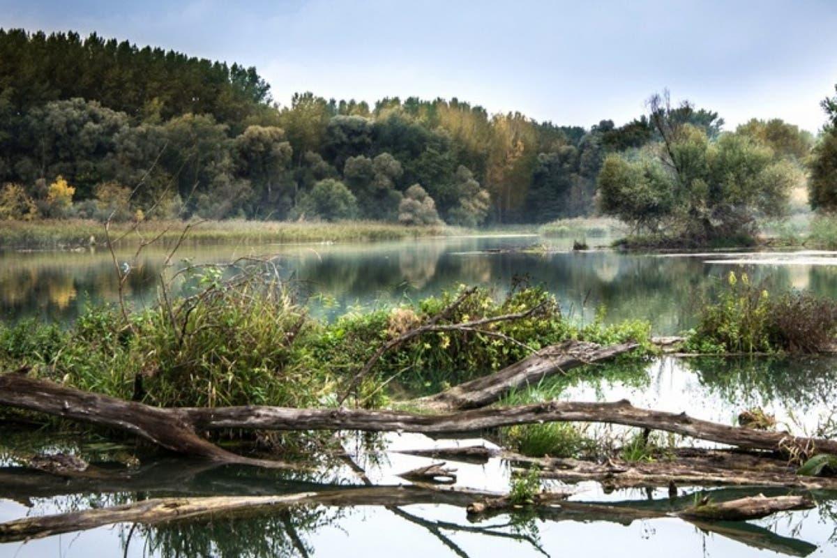 El río Henares, elegido para un programa europeo de reducción de residuos