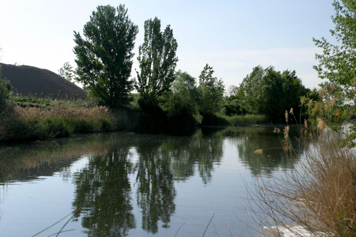 Unión de municipios para exigir la recuperación de los ríos Henares y Jarama
