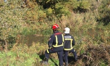 Aranjuez: Buscan a un cazador que se ha caído al río Tajo