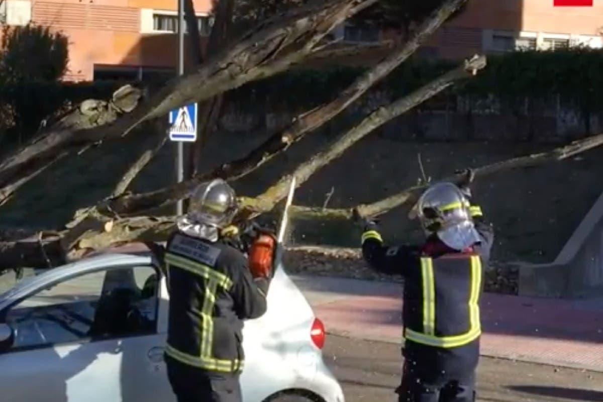El fuerte viento provoca 530 incidencias en la Comunidad de Madrid