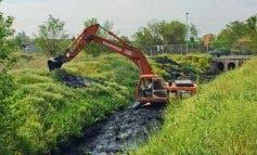 Torrejón vuelve a limpiar el arroyo Ardoz