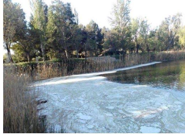 La laguna de Velilla de San Antonio amanece con nuevos vertidos