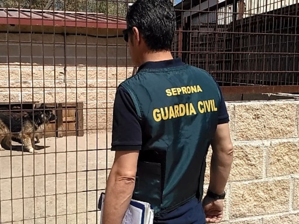 Intervenida en Madrid una instalación con 59 perros en pésimas condiciones