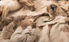 Arqueólogos de la Universidad de Alcalá localizan un corazón momificado
