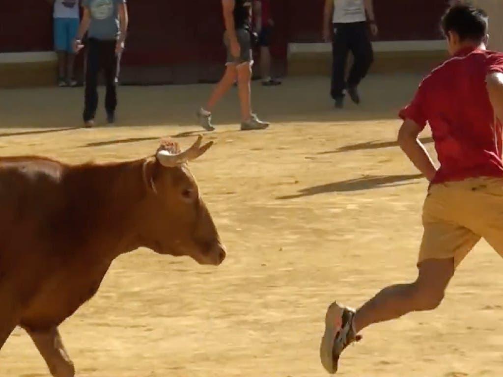 Unas Fiestas sin toros en San Fernando de Henares