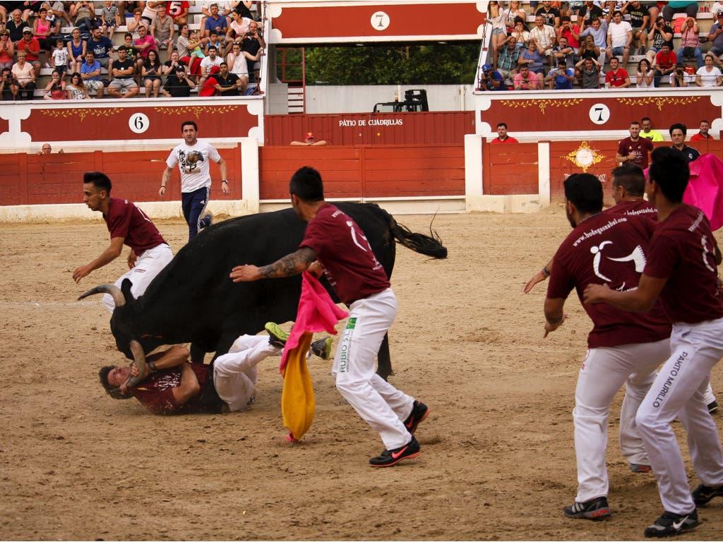El momento de la cogida (Juan Carlos Bejerano Pardo).