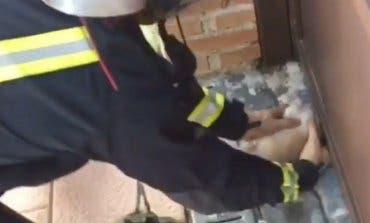 Angustioso rescate de un chihuahua atrapado bajo la puerta de un chalet