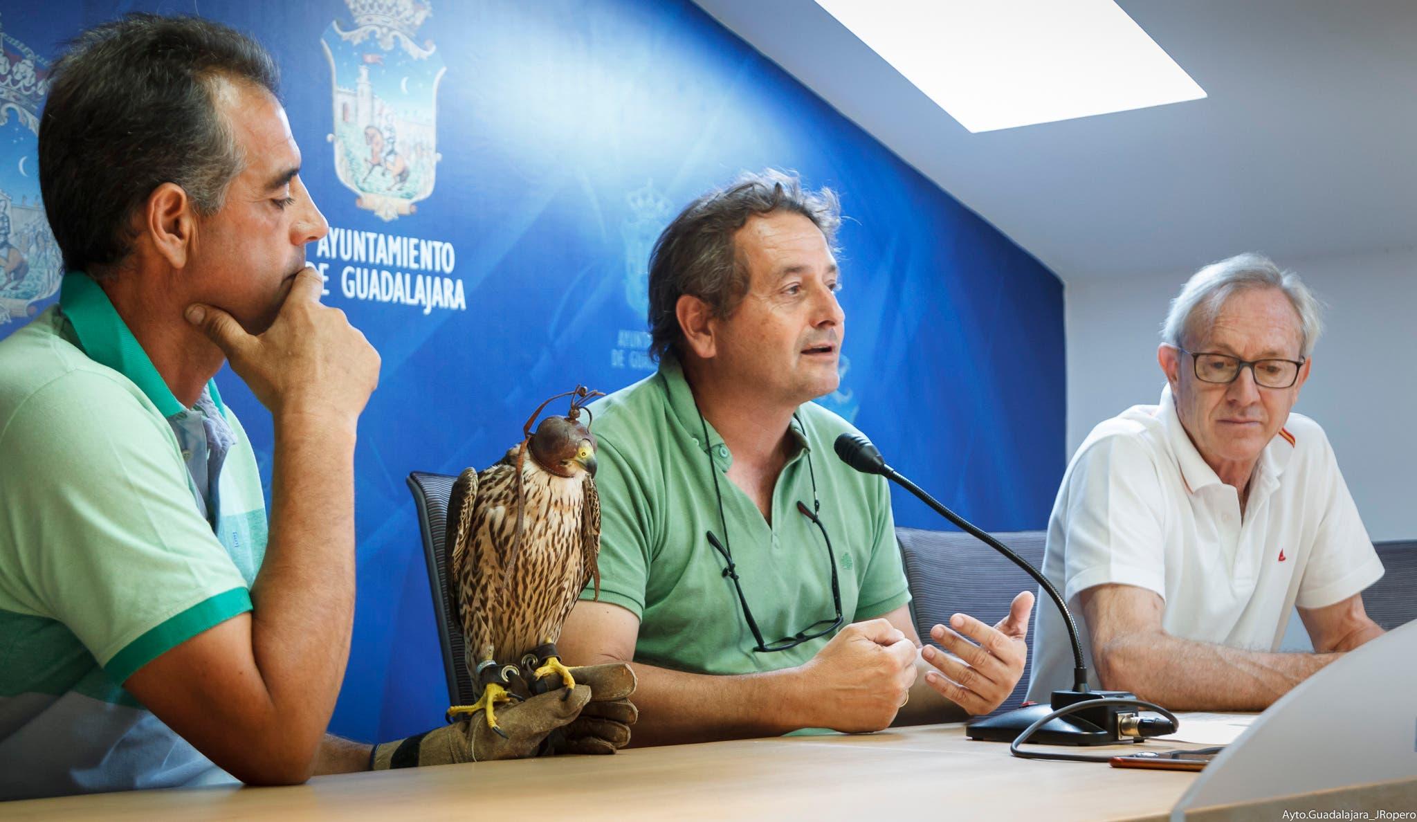 Presentación del proyecto (Ayto. Guadalajara).