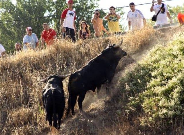 Brihuega celebra este miércoles uno de los encierros más antiguos de España