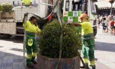 Madrid instala maceteros y bolardos para evitar atentados