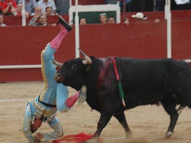 Dos novilleros, uno de Torrejón, heridos en las Fiestas de Azuqueca