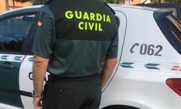 Detenidos por robar en una plantación de marihuana en Mejorada del Campo
