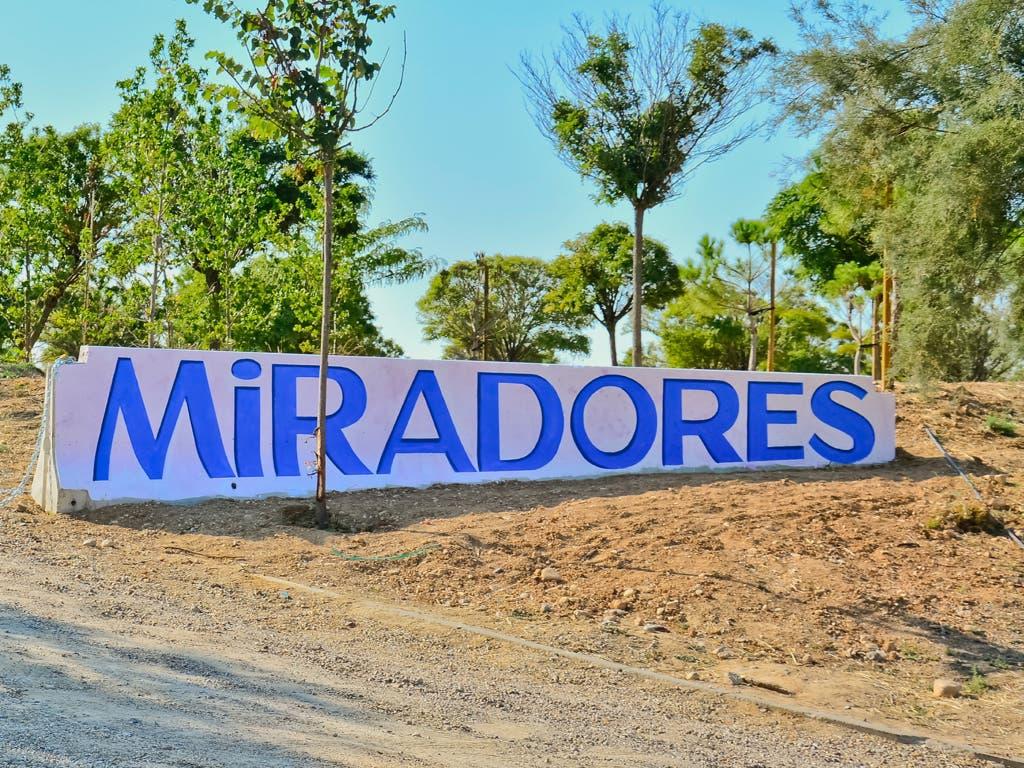Torrejón reforma el Parque Miradores con 5.000 árboles