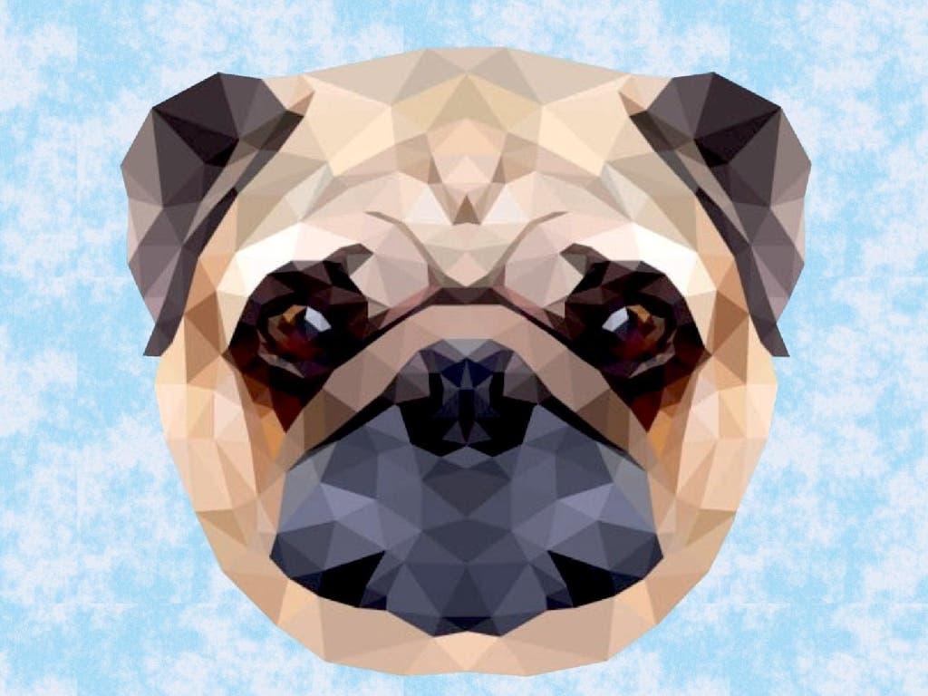 El domingo, el mayor evento de mascotas del Corredor del Henares