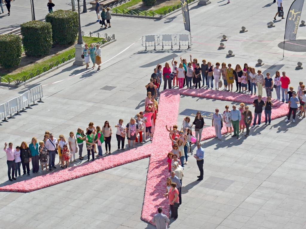 Un gran lazo rosa de flores naturales en la Plaza Mayor de Torrejón