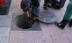 San Fernando se pone manos a la obra contra la plaga de ratas
