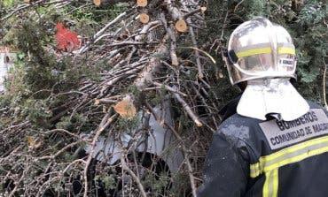 La borrasca Ana provoca en Madrid las primeras incidencias