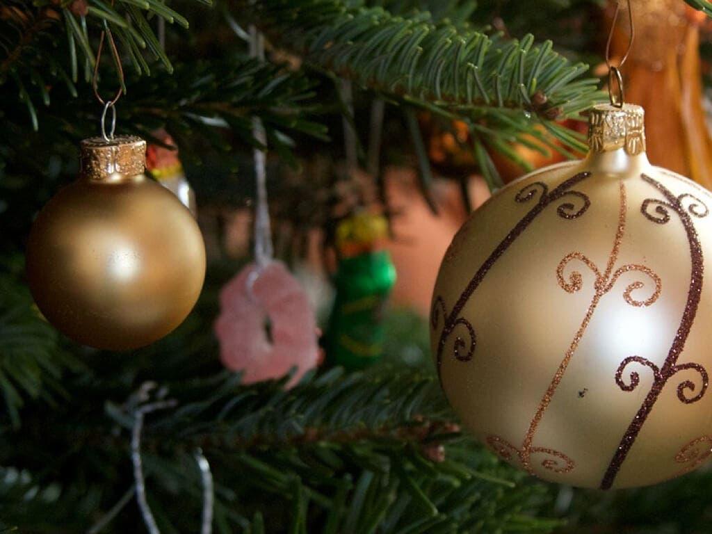 Torrejón recoge los árboles navideños de los vecinos para darles una segunda oportunidad