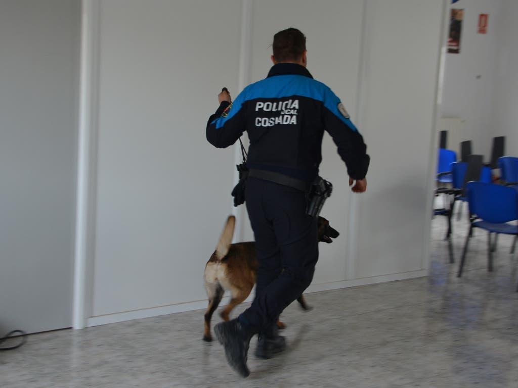 Detenido en Coslada un individuo dedicado al menudeo de drogas
