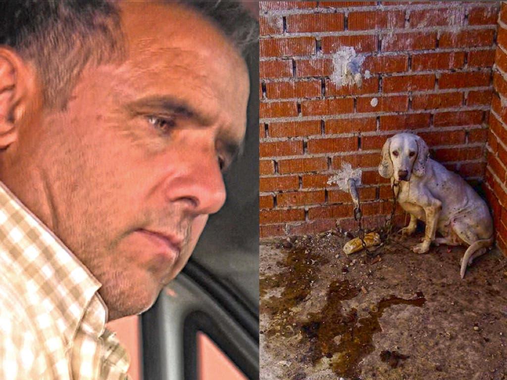 Condenado a año y medio de cárcel el cazador que maltrató a 55 perros