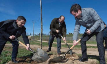 La Comunidad planta más de 1.000 árboles y arbustos entre Alcalá y Torrejón