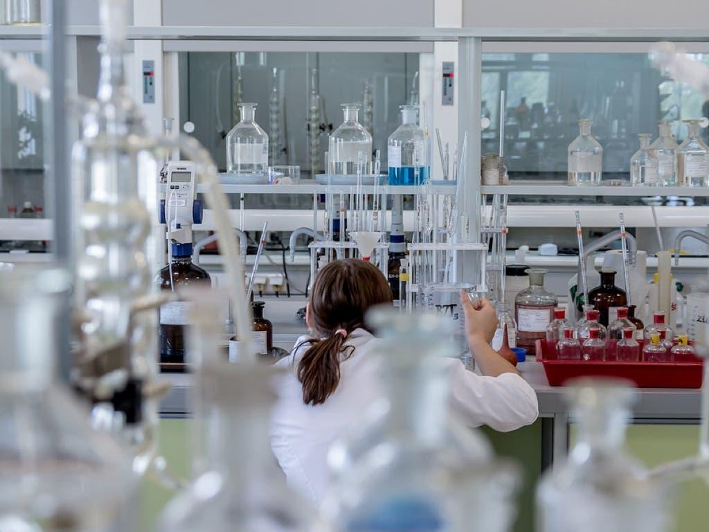 Confirmados dos casos de dengue contraído en España y un tercero sospechoso en Madrid