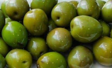 Campo Real te invita a degustar este domingo sus famosas aceitunas y quesos