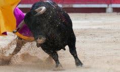 Podemos celebra la ausencia de toros en las Ferias de Alcalá de Henares