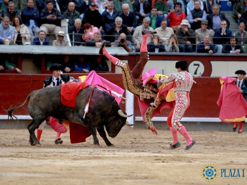 Herido grave El Cid tras sufrir una cornada en Las Ventas