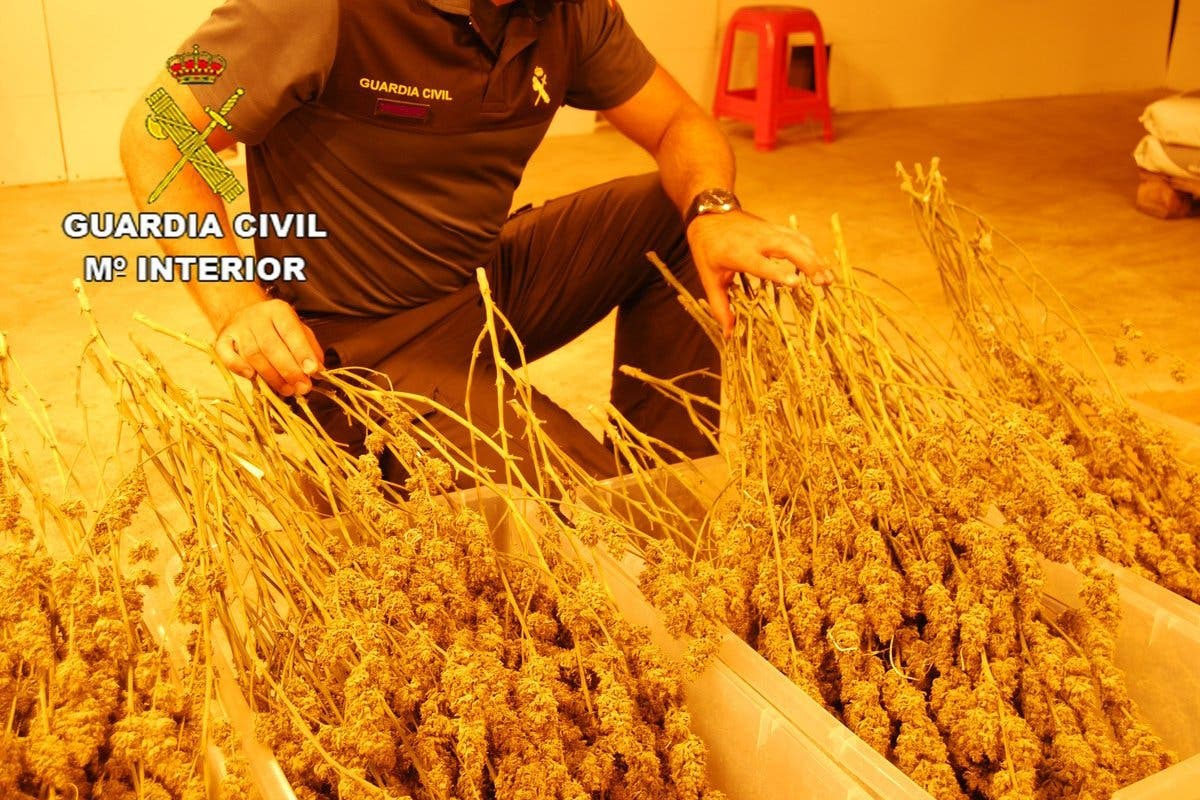 Dos detenidos y 44 kilos de marihuana incautados en Guadalajara