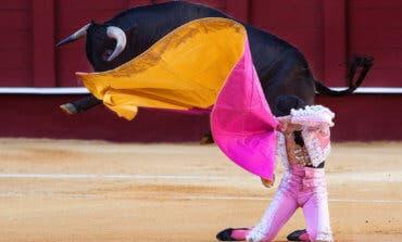 Pablo Iglesias propone un referéndum para decidir sobre los toros