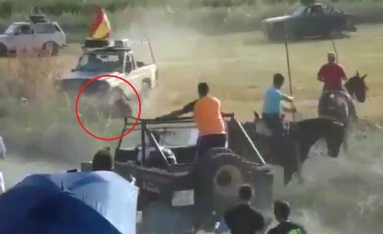 Un todoterreno mata a un toro en un encierro en Guadalajara