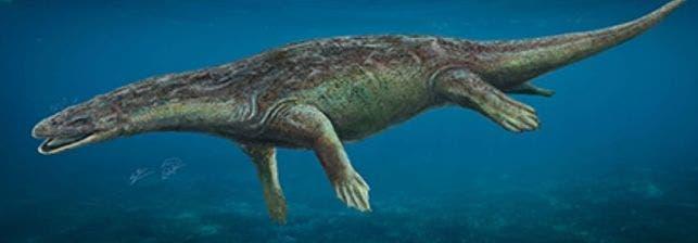 Descubren un reptil marino que vivió en Guadalajara hace 230 millones años