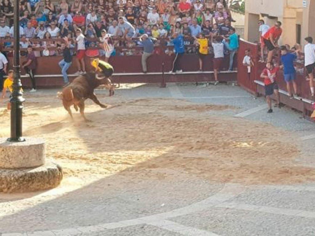 Un herido por asta de toro en el encierro de Salmerón (Guadalajara)