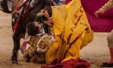La aparatosa cogida sufrida por Fortes en Las Ventas