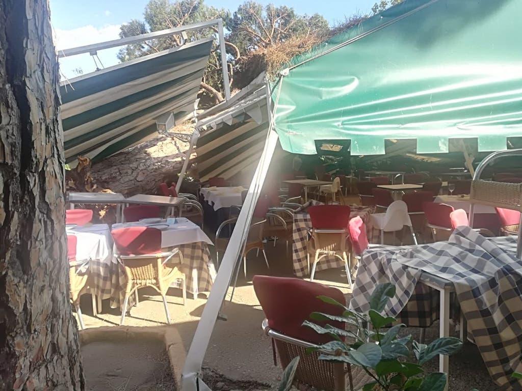 Un árbol de grandes dimensiones cae sobre la terraza de un restaurante en Madrid