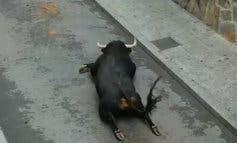 La brutal imagen del toro accidentado en Mejorada del Campo llega a la prensa internacional